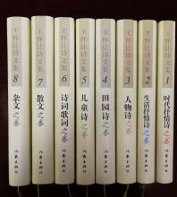 王怀让诗文集(1-8卷)